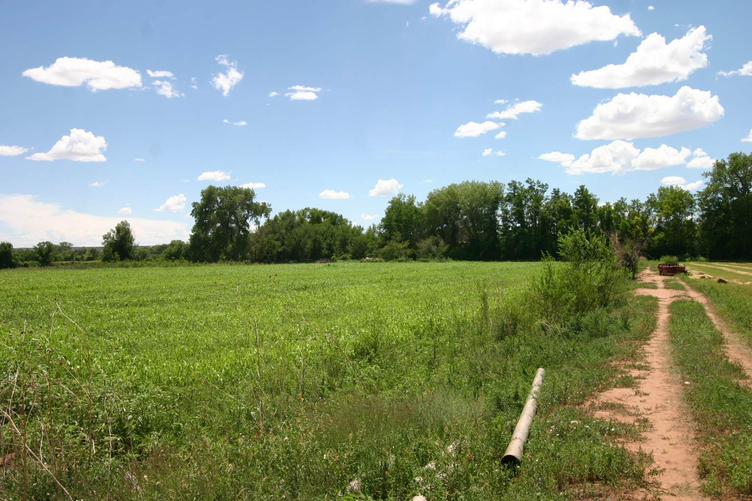 58 +- Acres of farm irrigated land